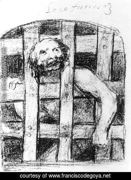 Goya - A Lunatic behind Bars