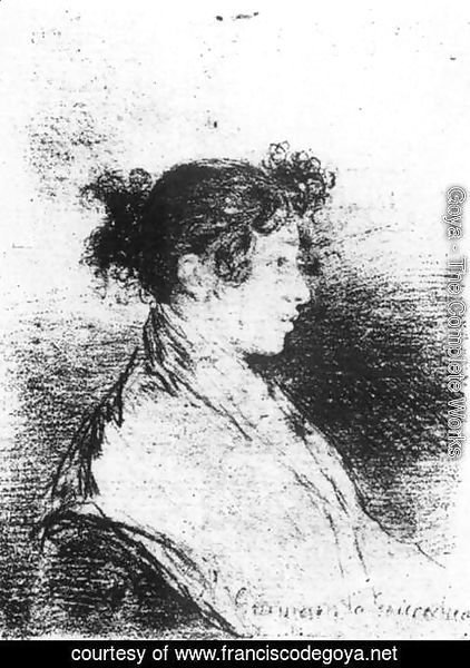 Goya - Gumersinda Goicoechea, Goya's Daughter-in-Law