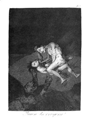 Goya - Who could believe it